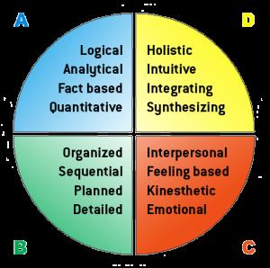 Whole Brain Thinking from Herrmann International